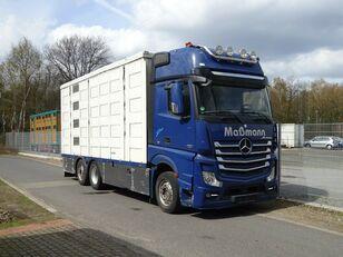 شاحنة نقل المواشي MERCEDES-BENZ Actros 2551 6x2