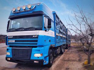 شاحنة نقل المواشي PEZZAIOLI + العربات المقطورة شاحنة نقل المواشي