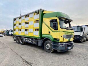 شاحنة نقل المواشي RENAULT PREMIUM 460 بعد وقوع الحادث