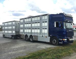 شاحنة نقل المواشي SCANIA R620 V8 For animal transport - do zywca + العربات المقطورة شاحنة نقل المواشي